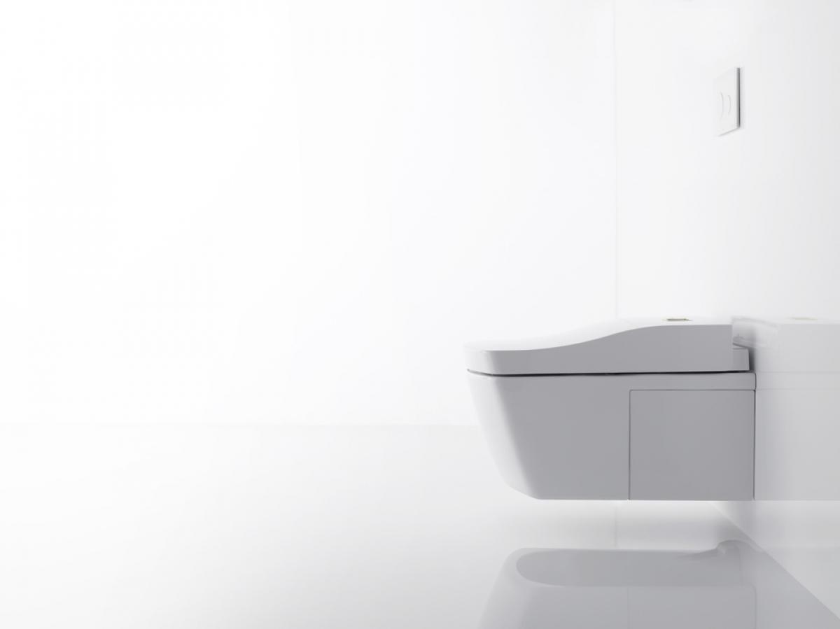 wc japonais intelligent washlet toto induscabel salle de bains chauffage et cuisine. Black Bedroom Furniture Sets. Home Design Ideas